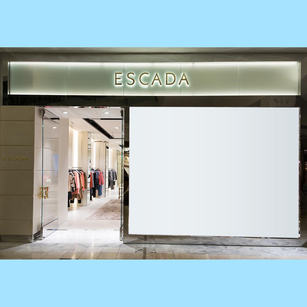 The store window-1